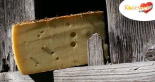 Was ist Käse genau?