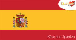 Käsesorte aus Spanien